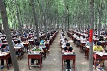 教育部校园和教师不得发布学生期末考试成绩网友掩耳盗铃